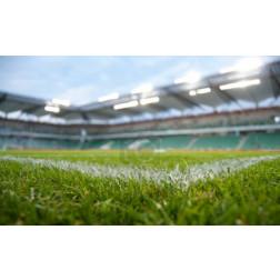 Green stadium