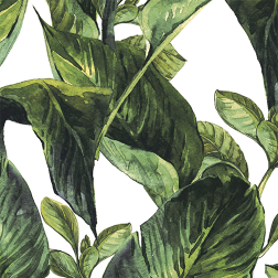 Tropical Leaves Pattern - Sample Kit