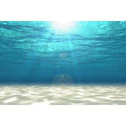 Underwater Beach