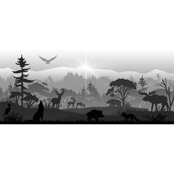 Woodlands Wildlife